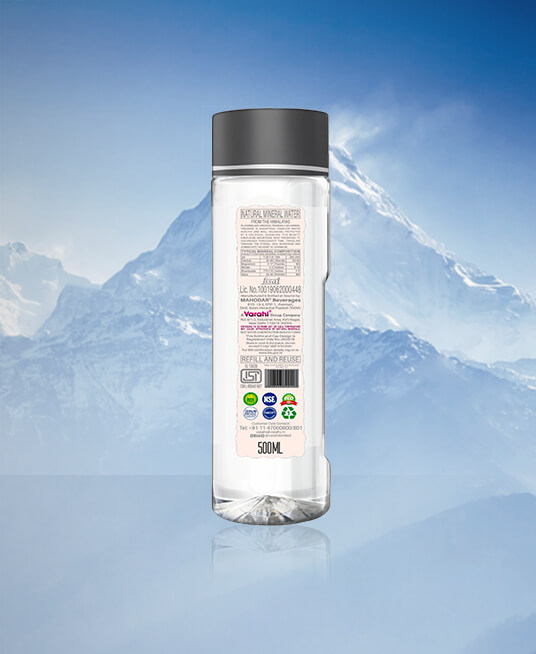 Himalaya Palm Design Natural Mineral Water